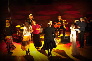 Flamenco-Studio Sabine Jordan